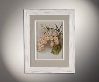 Орхидеи 5