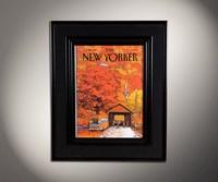 New Yorker 6