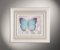 Бабочки 3