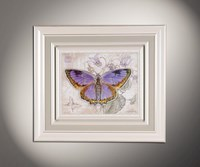 Бабочки 6