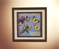 Бабочки 13