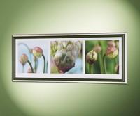 Floral Emotions 3