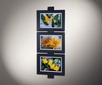 Дикие цветы 3