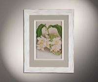 Орхидеи 1