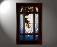 Дубовая ветка в окне