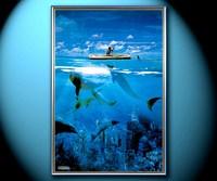 Каноэ и дельфины