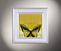 Полет бабочки 6