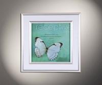 Полет бабочки 10
