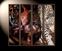 Три зверя 1